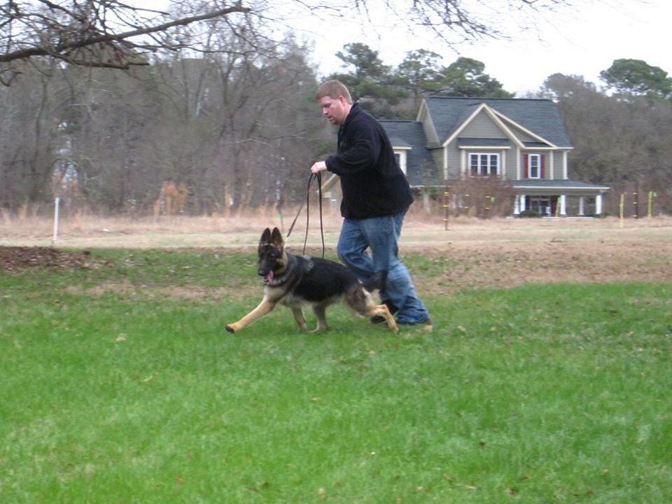 Daisy moving @ 10 months